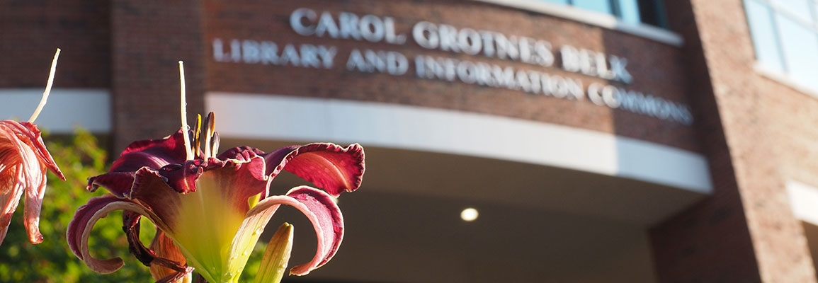 Flower in foreground, Belk Library and Information Commons in background